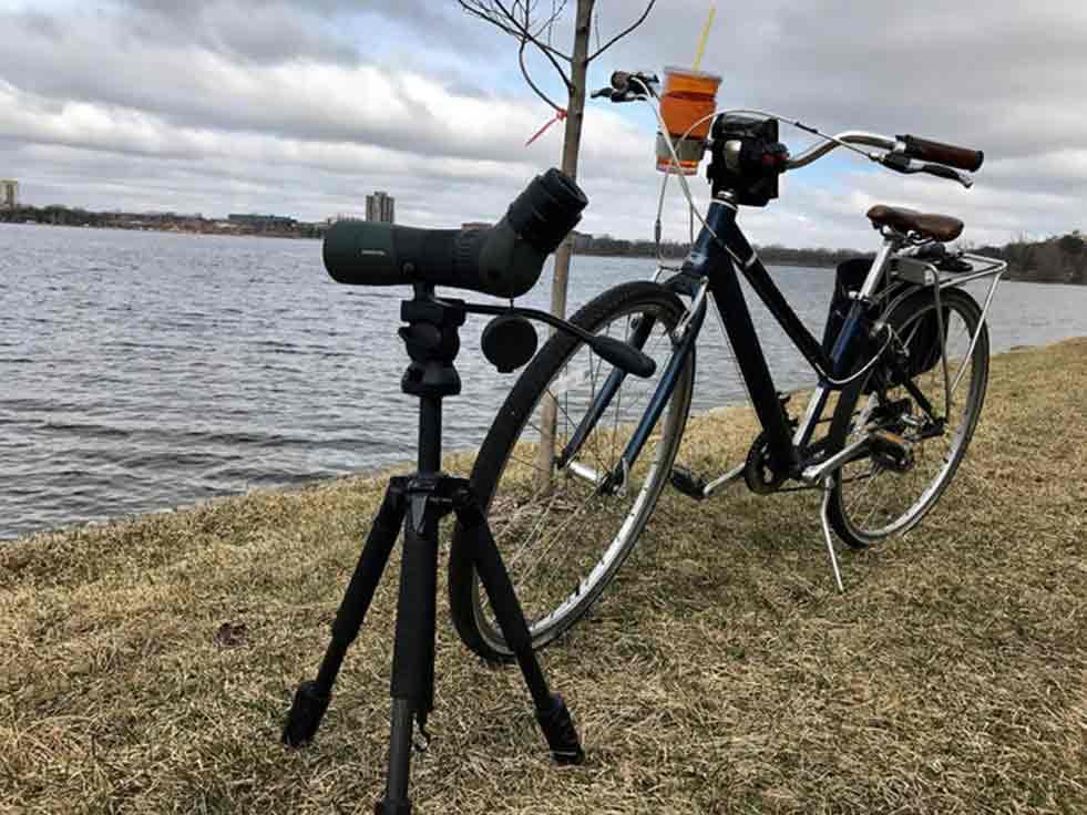 observación aves bicicleta